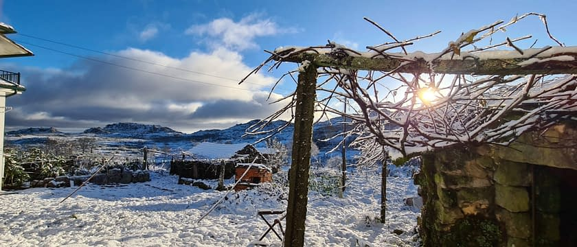 imagem da neve em adsamo